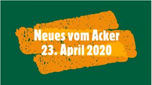 Video Neues vom Acker 23. April 2020